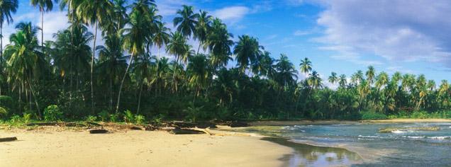 Costa Rica Escorted Tours