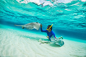 Scuba diver and stingray, Grand Cayman Islands