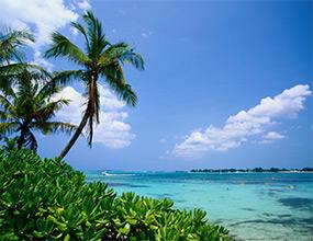Cruisecaribbeannclbahamasfloridaxjpg - Cruises from florida to bahamas