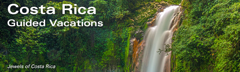 Costa Rica Escorted Tours - Waterfall