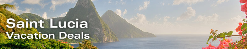 View of Twin Pitons with flowers, St Lucia, Caribbean