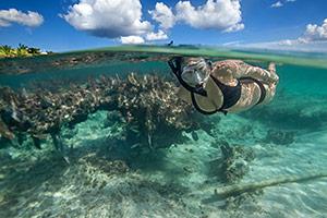 Snorkel, Cozumel