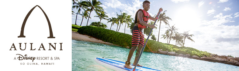 Disney Aulani Paddle Board