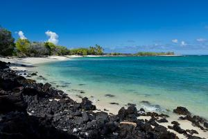 Big Island of Hawaii beach